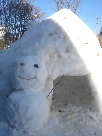 雪① 1.25