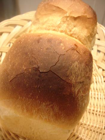 くーぷ食パン① 3.5