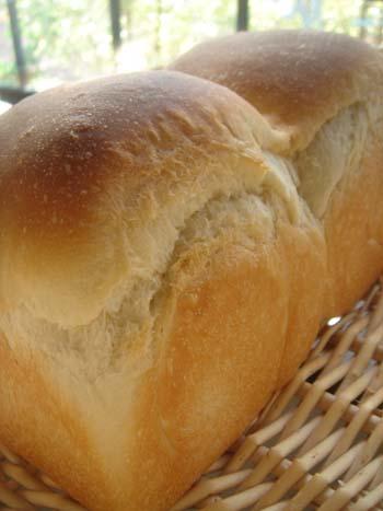 基本の食パン① 7.2