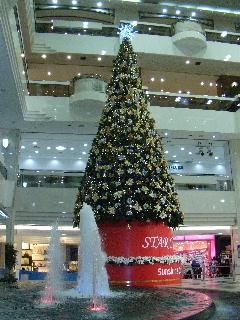 育毛クリスマス