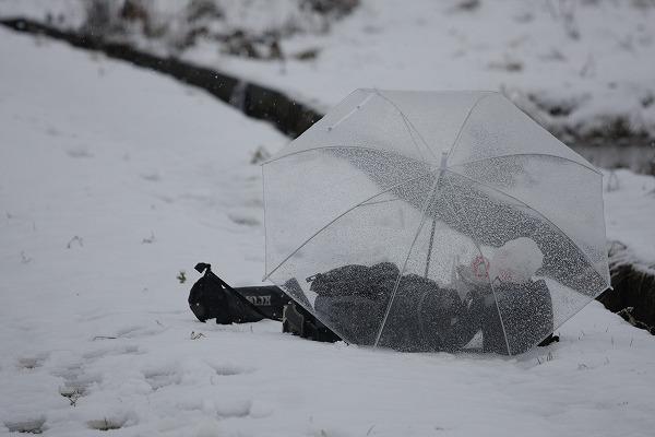 傘は必須ですw