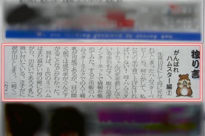 加工新聞②