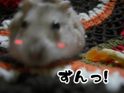 加工ショコラ3.11③+1