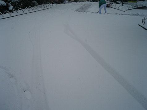 雪が積もってます