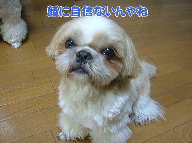 image1076.jpg