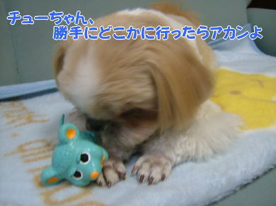 image1079.jpg