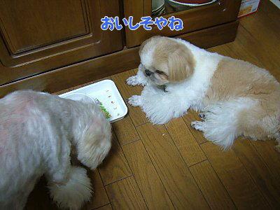 image1169.jpg
