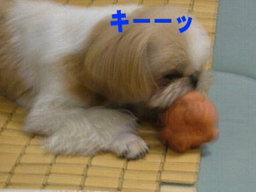 image123.jpg