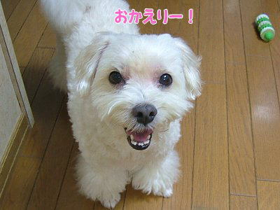 image1261.jpg