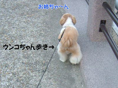 image1270.jpg