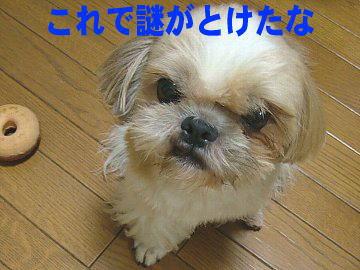image133.jpg