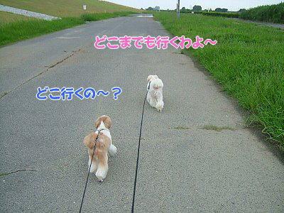 image1359.jpg