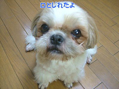 image1371.jpg