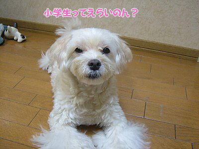 image1384.jpg
