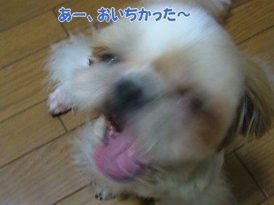 image1396.jpg