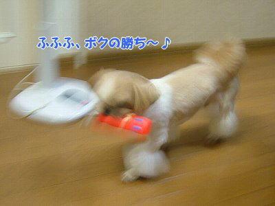 image1408.jpg