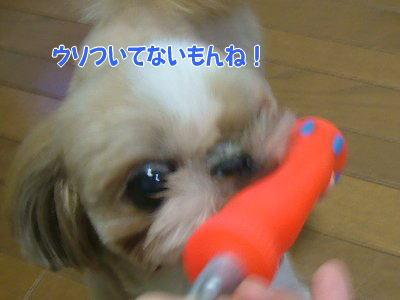 image1409.jpg
