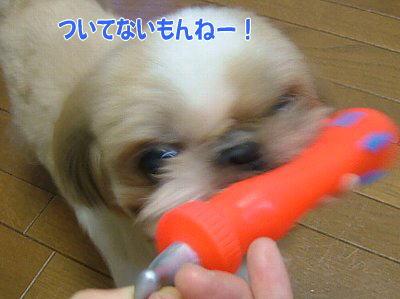 image1410.jpg