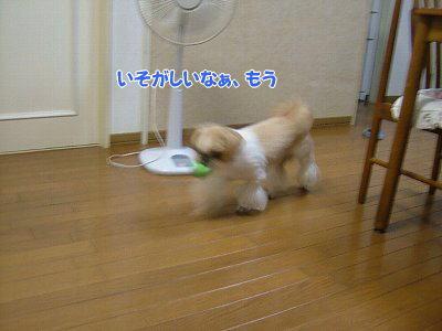 image1479.jpg