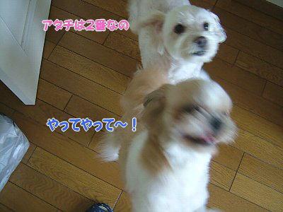 image1791.jpg