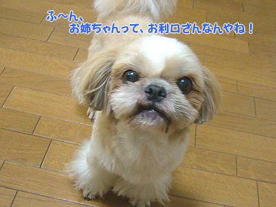 image1819.jpg