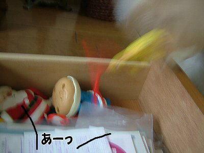 image1824.jpg