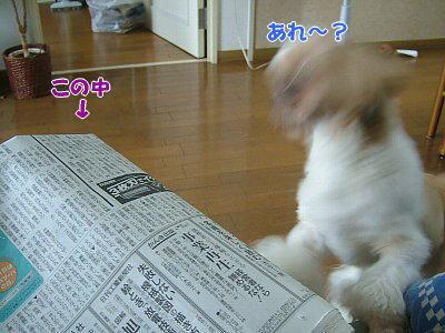 image1826.jpg