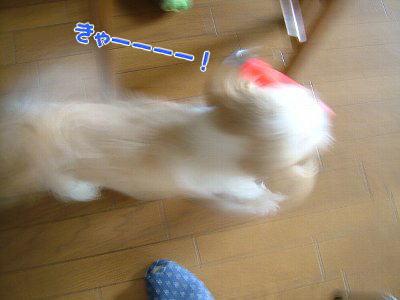 image1846.jpg