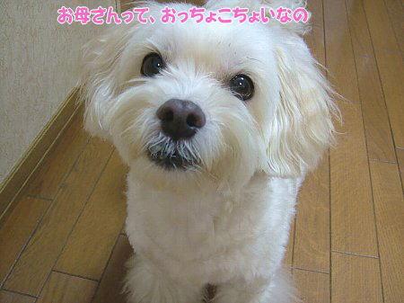 image1878.jpg