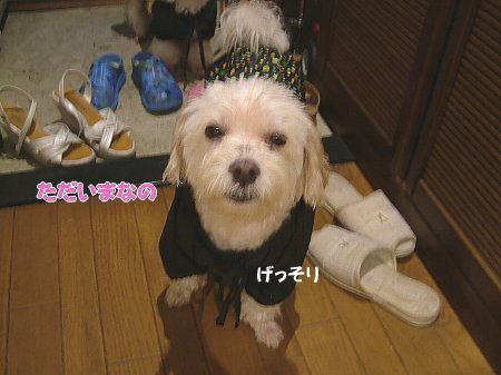 image1889.jpg