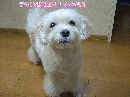 image1896.jpg