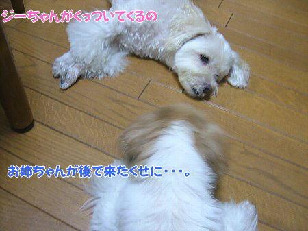 image1901.jpg