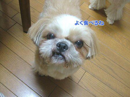 image2012.jpg