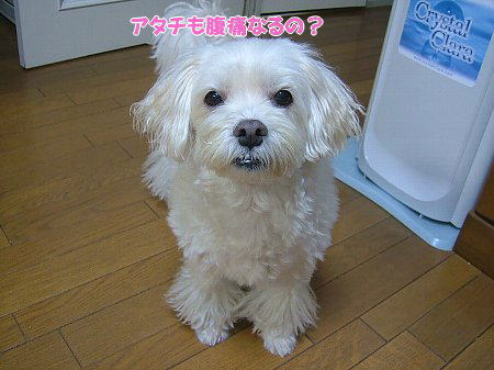 image2073.jpg