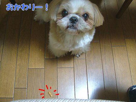 image2100.jpg
