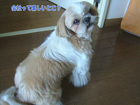 image2166.jpg