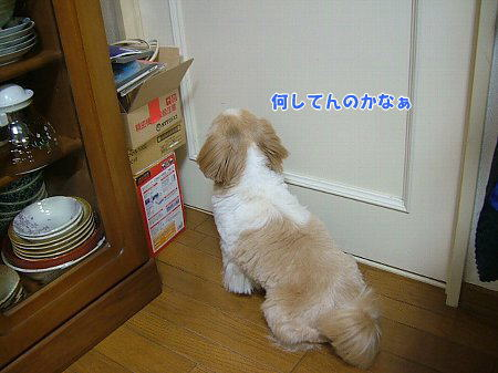 image2199.jpg