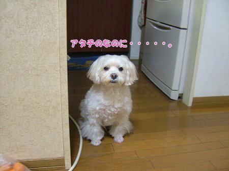 image2301.jpg