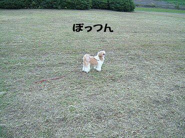 image280.jpg