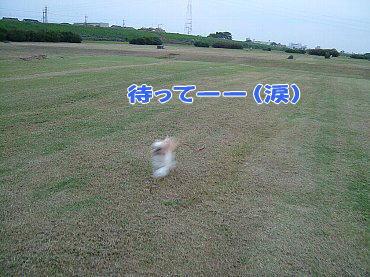 image281.jpg