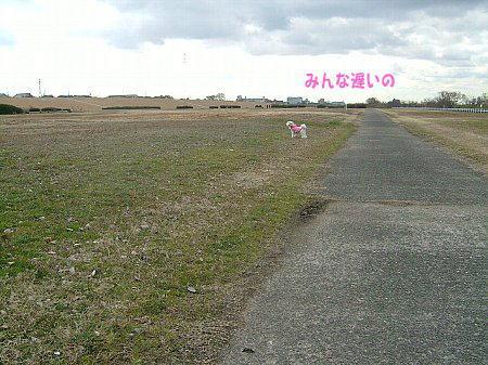 image2830.jpg