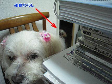 image2886.jpg