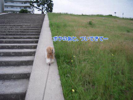 image2895.jpg