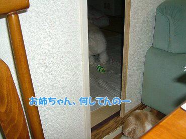 image423.jpg