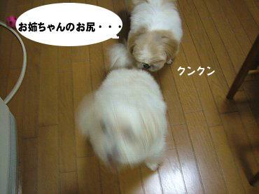 image573.jpg