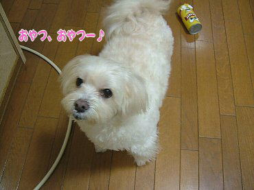 image590.jpg