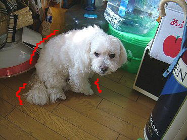 image592.jpg