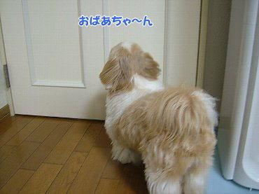 image607.jpg