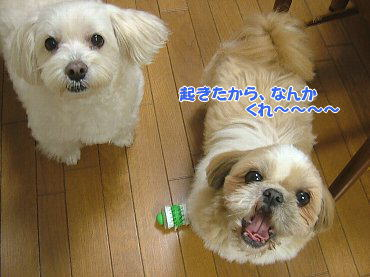 image640.jpg