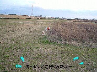 image643.jpg